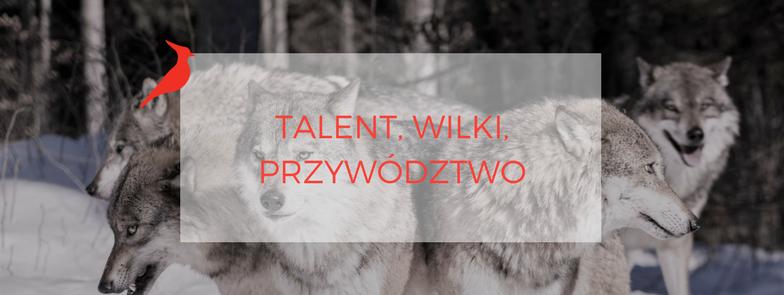 Liderka Talentów. Talent, wilki, przywództwo